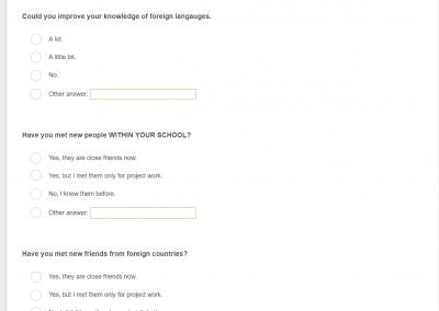 online-anketa